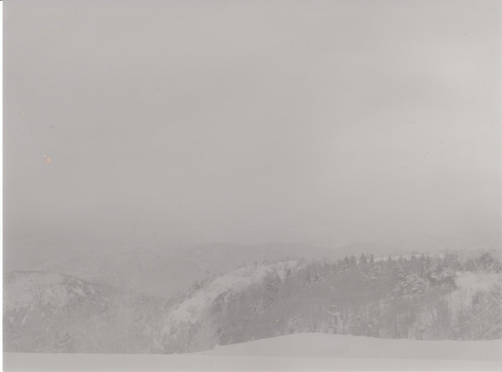 landschap 12.jpeg