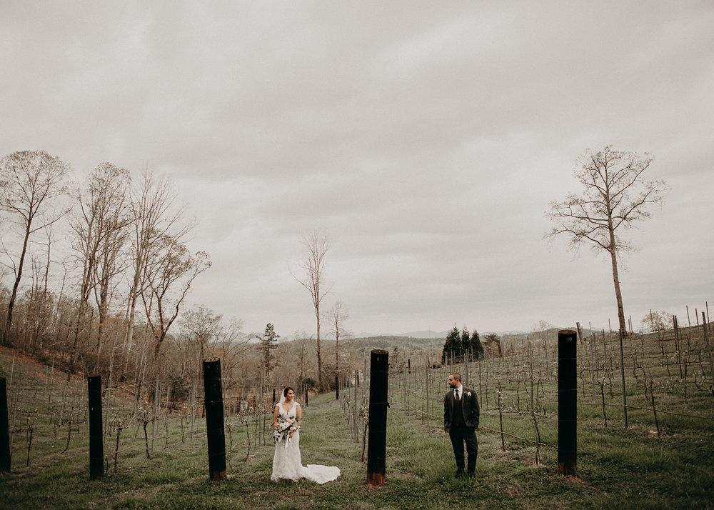 70 - Bride and Groom Vineyard pictures .jpg