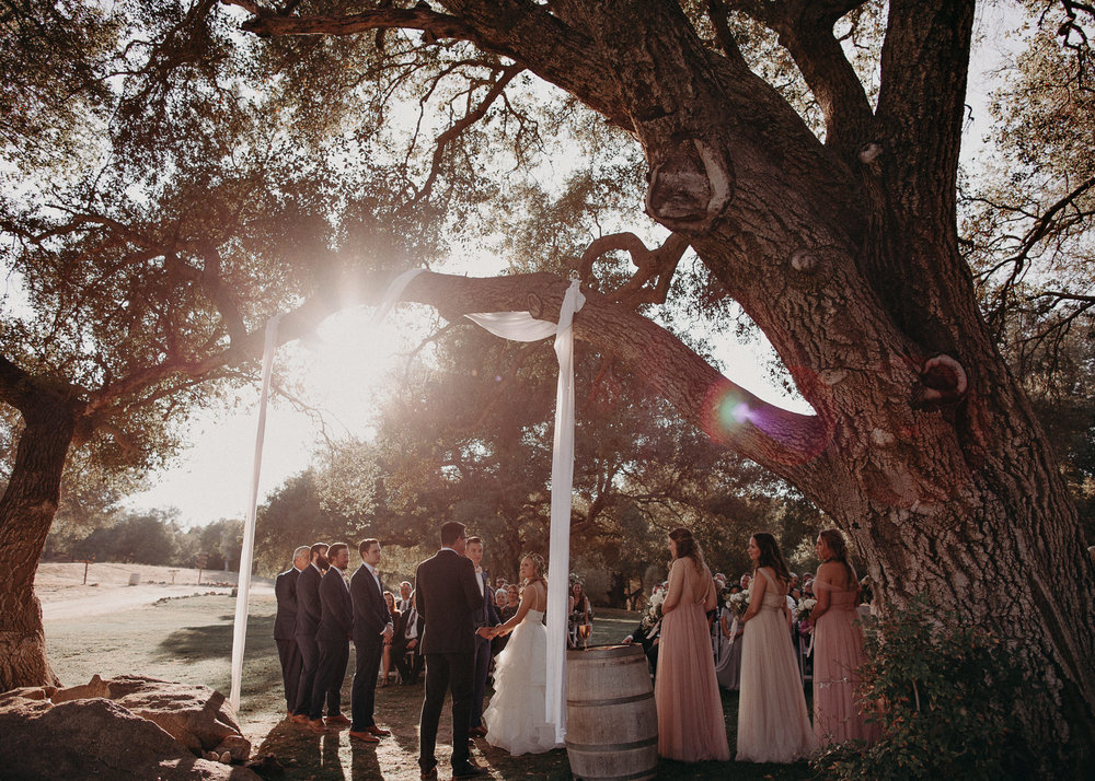 89 - Wedding ceremony - Portraits : Bride and groom and bridal party : wedding venue San Diego - Milagro Winery Ramona - CA - Atlanta Wedding Photographer .jpg.JPG