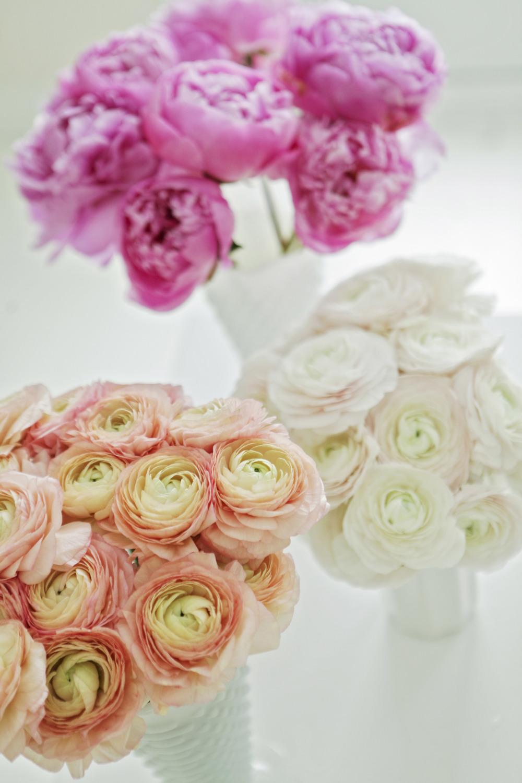852_flowershoppeeditrs.jpg