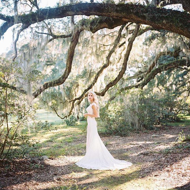 Bridal goals 😍 . Photo: @philipcaseyphoto Venue: @magnoliaplantationweddings