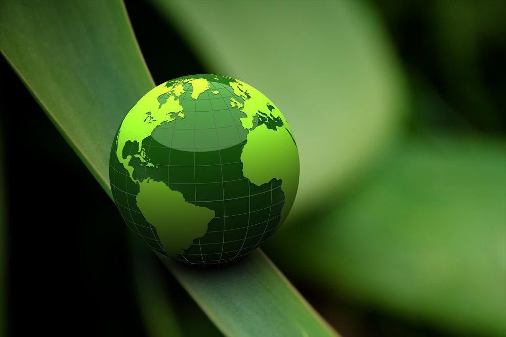 Descubra nuevas opciones de financiación a través de nuestro mercado global   Conoce más