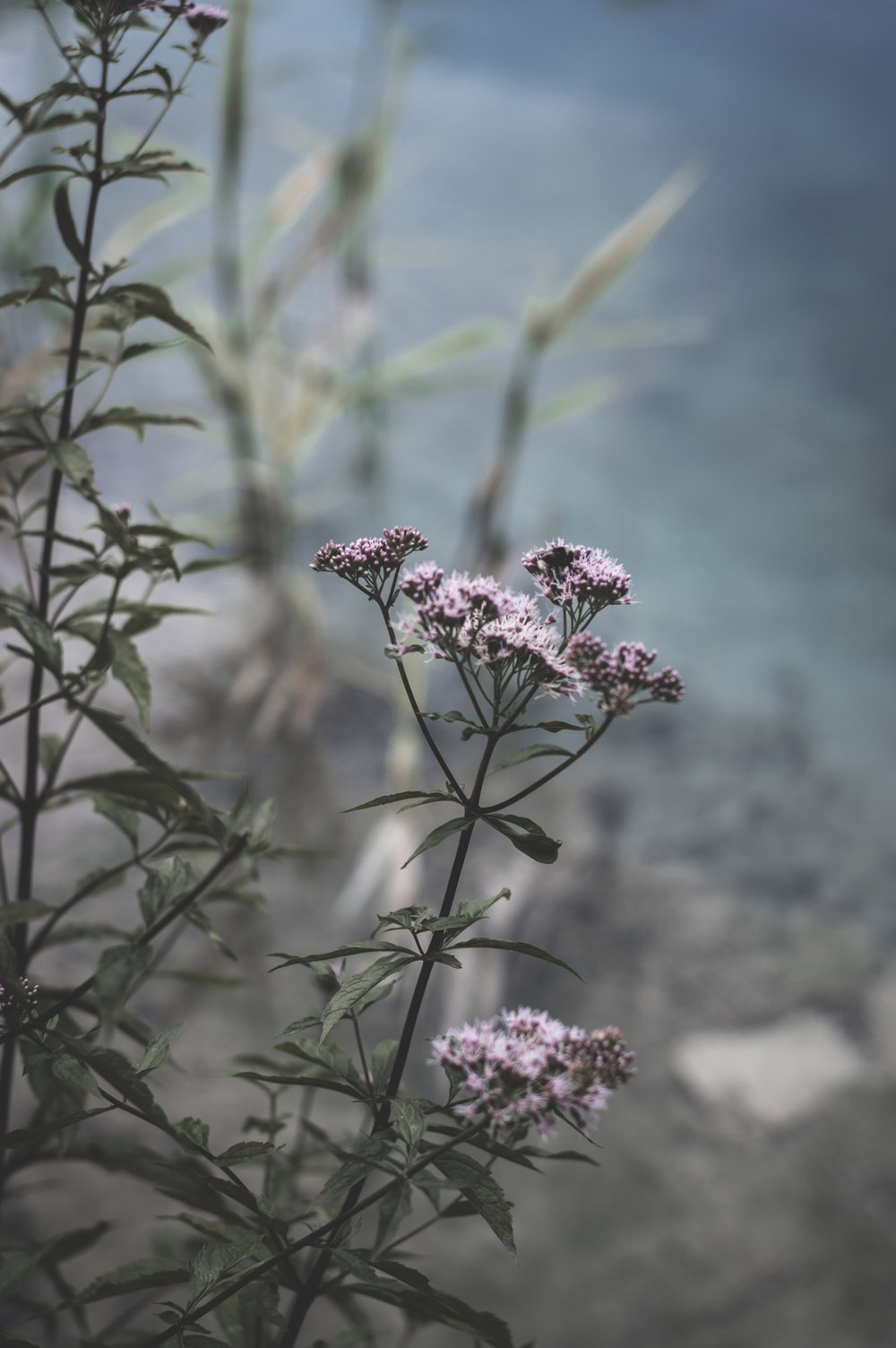 Plitvice Lakes 8.jpg