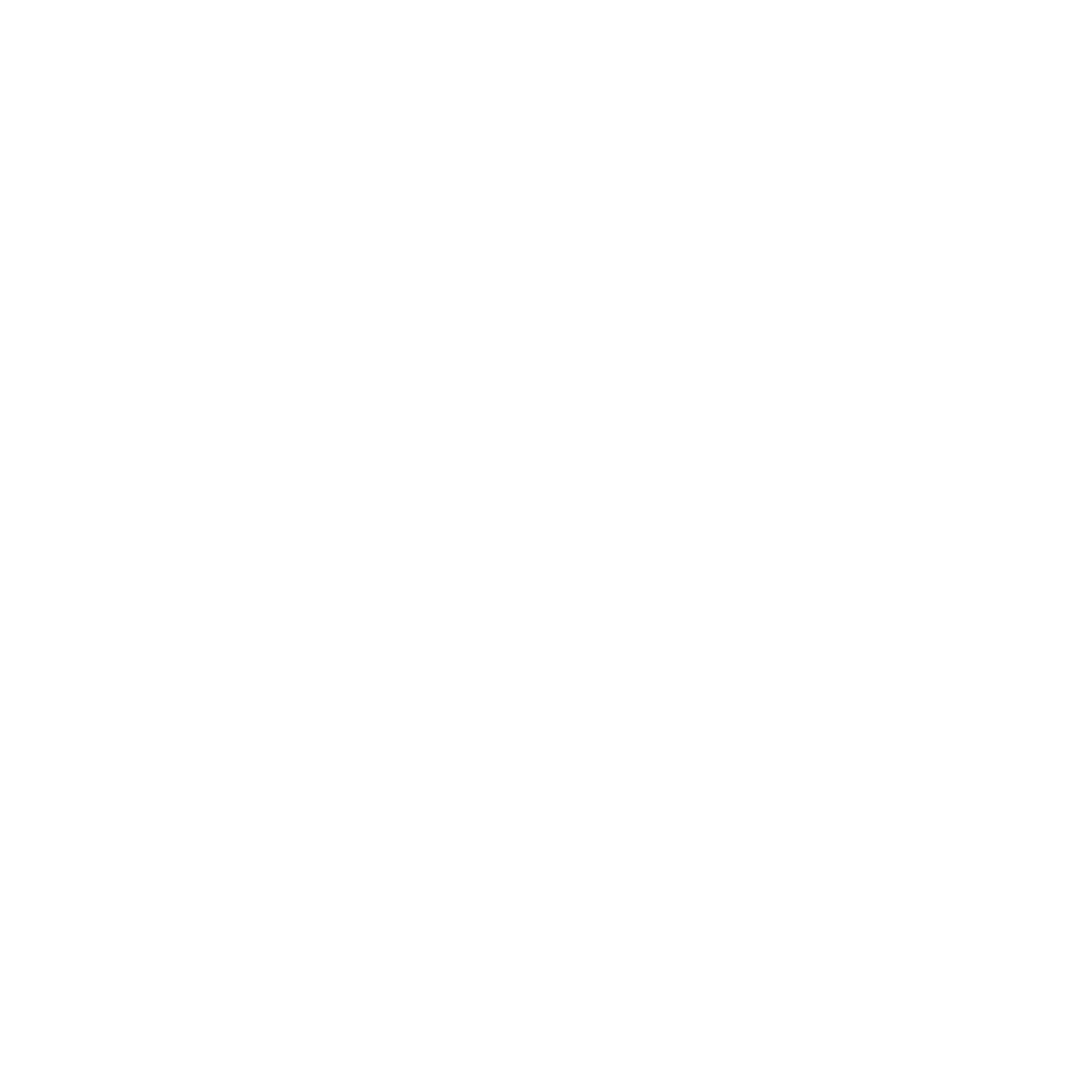 Newton Leaders