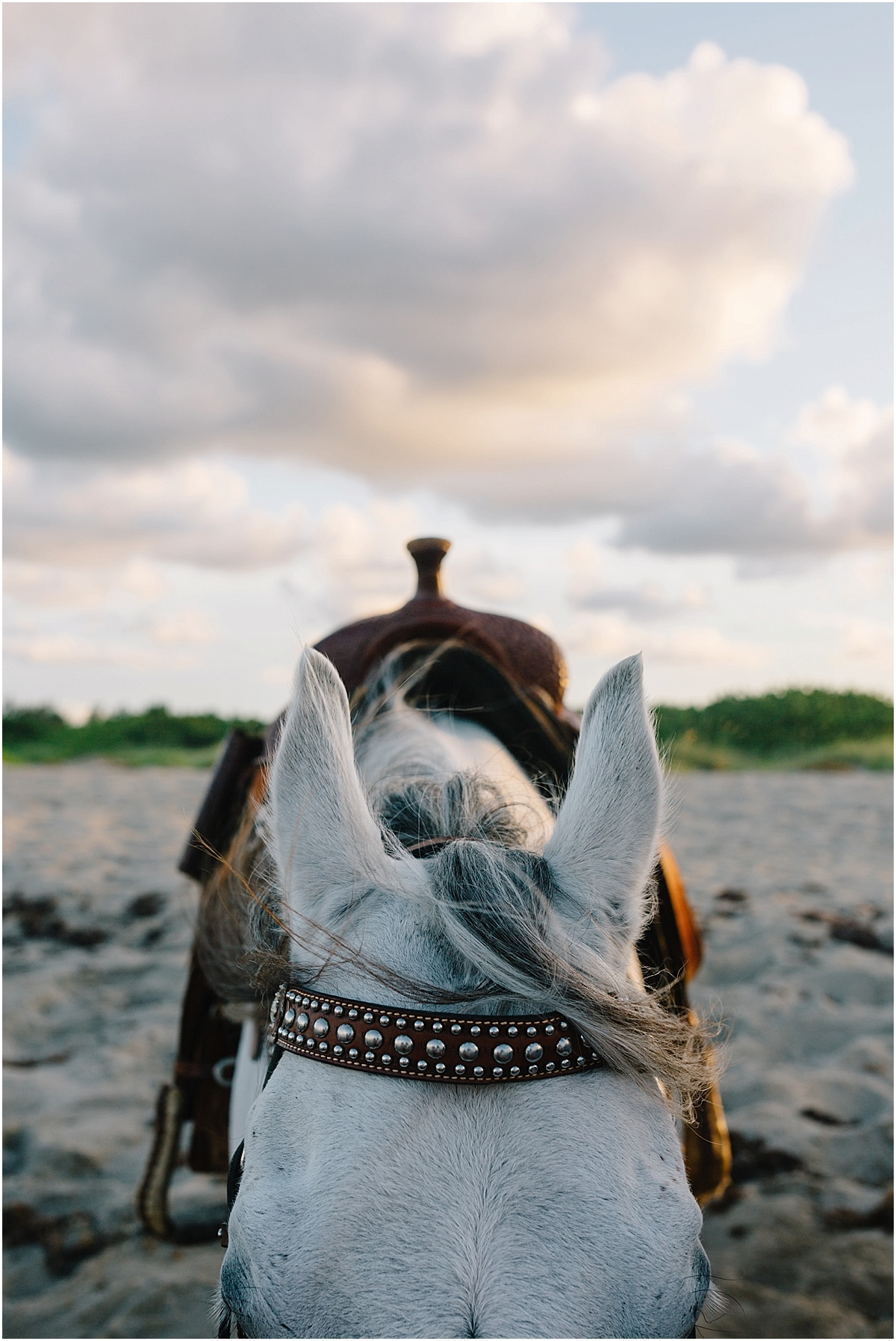 Horse_Engagement_Beach_Hutchinson_Island_Sonju_0026