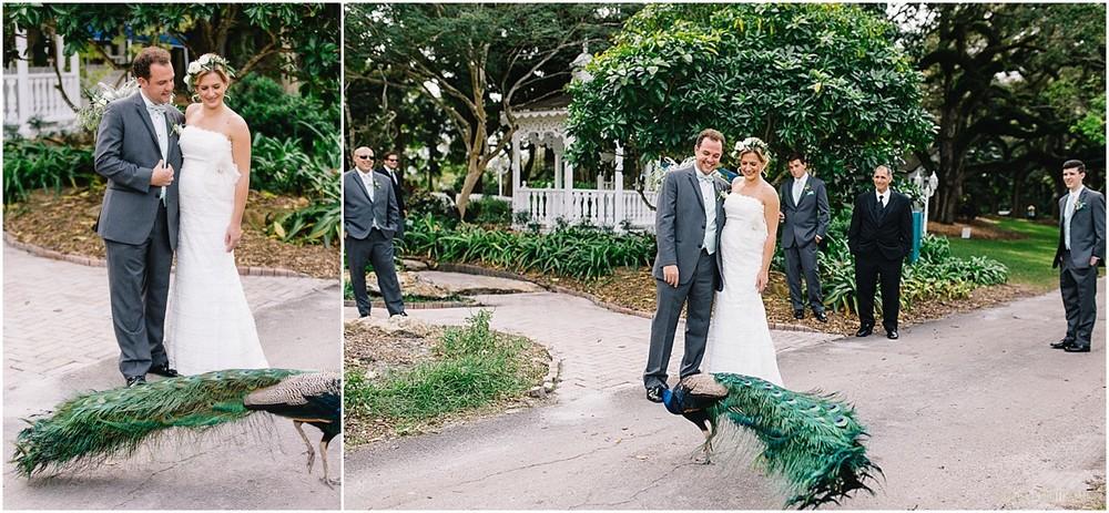 Flamingo-Gardens-Wedding-Photographer-Laura-Shaun-Sonju_0032.jpg