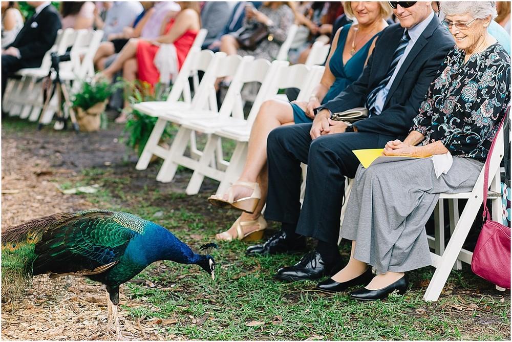 Flamingo-Gardens-Wedding-Photographer-Laura-Shaun-Sonju_0043.jpg