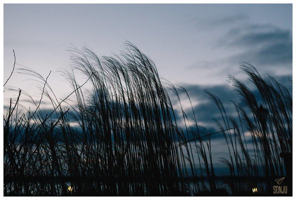 Rhode Island 12.jpg