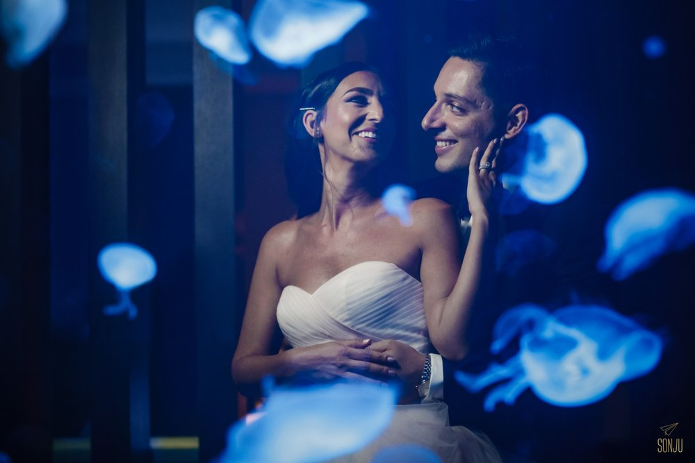 Jellyfish-tank-W-Fort-Lauderdale-Wedding-Photography