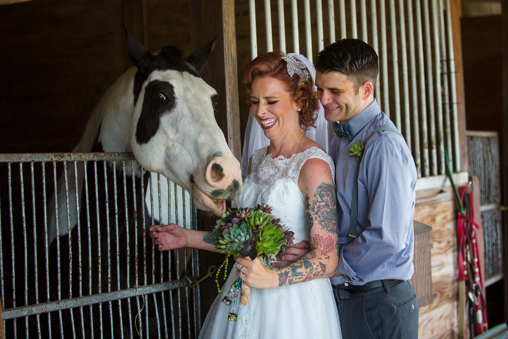 Florida-wedding-photographer-horse-stable-succulent-bouquet.JPG