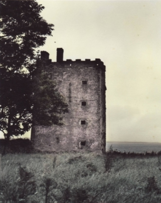 Carrigoholt Castle webcopy.jpg