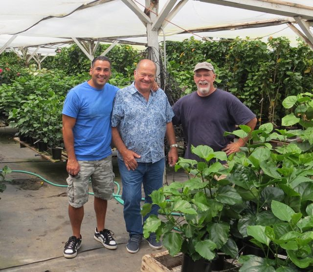 Darren with world famous hybridizers Richard Johnson of Tahiti and Charles Black of Hidden Valley Hibiscus