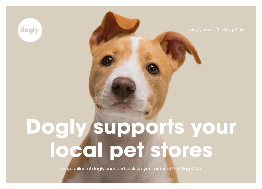 dogly_postcard_dog_20171229_03.png
