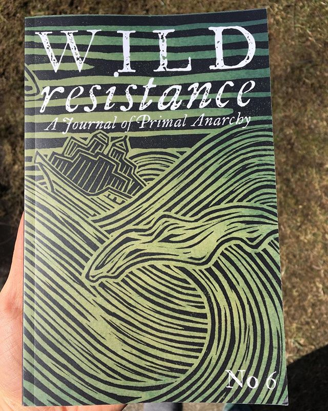 "I'm psyched about these two new books from @blackandgreenpress. If you're looking for the intersection of wildness and activism, this is where to look. . Wild Resistance No 6 is the newest installment of Black & Green's yearly journal. Inside you'll find fascinating essays and thought-pieces on a wide array of topics centering around wildness. Plus field notes from resistance movements (particularly Indigenous resistance) and reviews of other relevant books. All super well-researched and nicely put together. . The Cull of Personality: ""In April 2018, a Canadian man shot and killed the Shipibo-Conibo healer, Olivia Arevalo. He had been going to the Peruvian Amazon on and off for years, seeking one thing: ayahausaca. In his story, he wanted to become a healer. He saw that the Shipibo, and Arevalo in particular, held a cultural memory of a plant that he could learn and bring back to Canada with him. But in seeking to extract a cultural memory - one he may have always been unable to grasp the history of - he joined a long line of colonizers who sought out the Amazon as a point of extraction to feed a globalized civilization."" . See you Friday, 12:30-5. . . . #books #bookstore #bookspace #illio #itlookslikeitsopen #anarchism #primalanarchy #anticiv #decolonize #wildresistance #kevintucker #cullofpersonality"