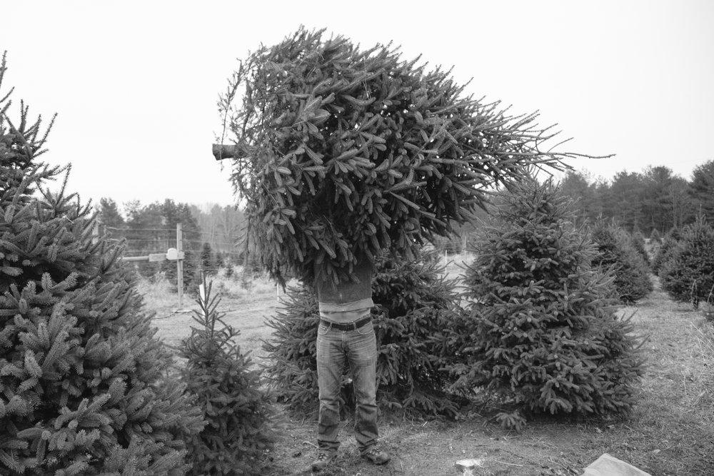 Christmas 16-2.jpg
