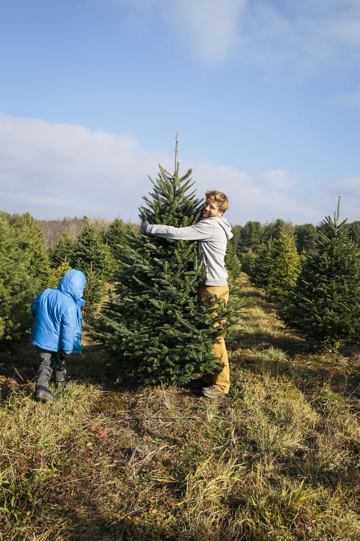 Christmas 15ing-4.jpg