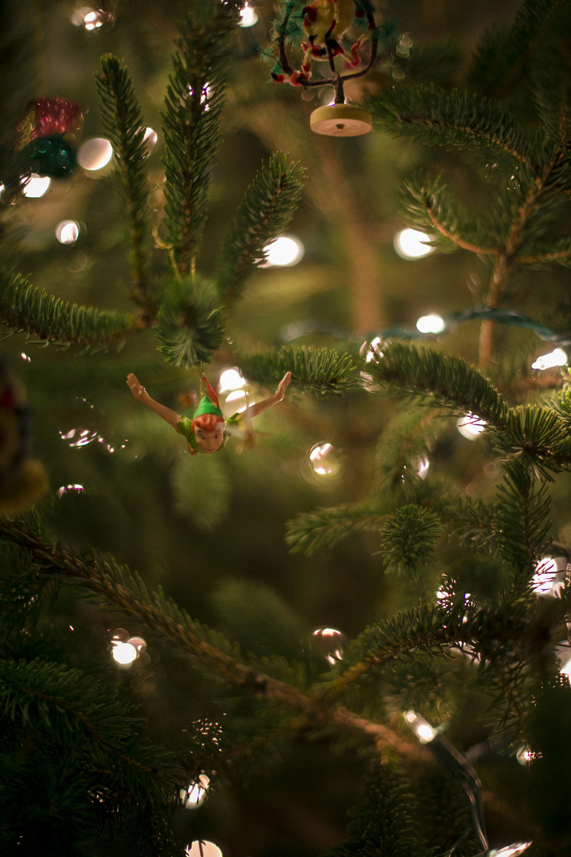 Christmas 2016-11.jpg