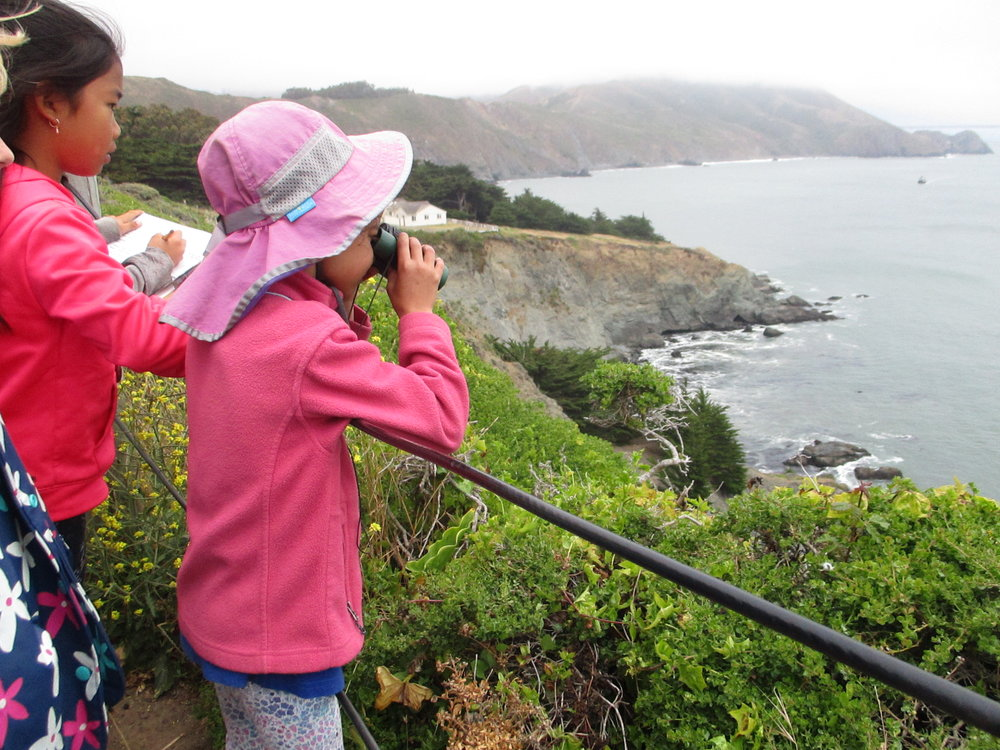 Campers use binoculars to spot harbor seals