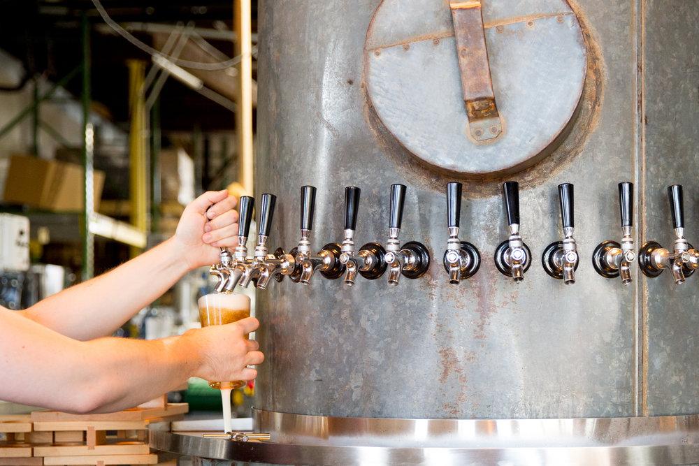 The beer beer would drink if beer could drink beer