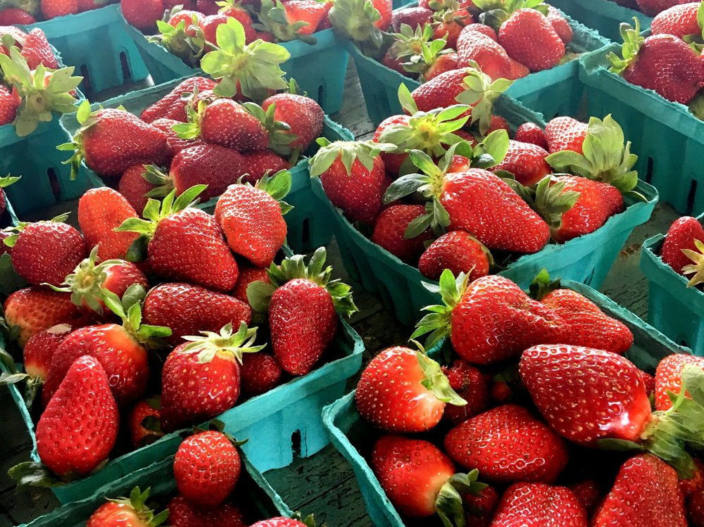 Apparently this was a fantastic year for strawberry crops because they all tasted out-of-this-world delicious. With free samples and plenty to choose from, you really can't go wrong.