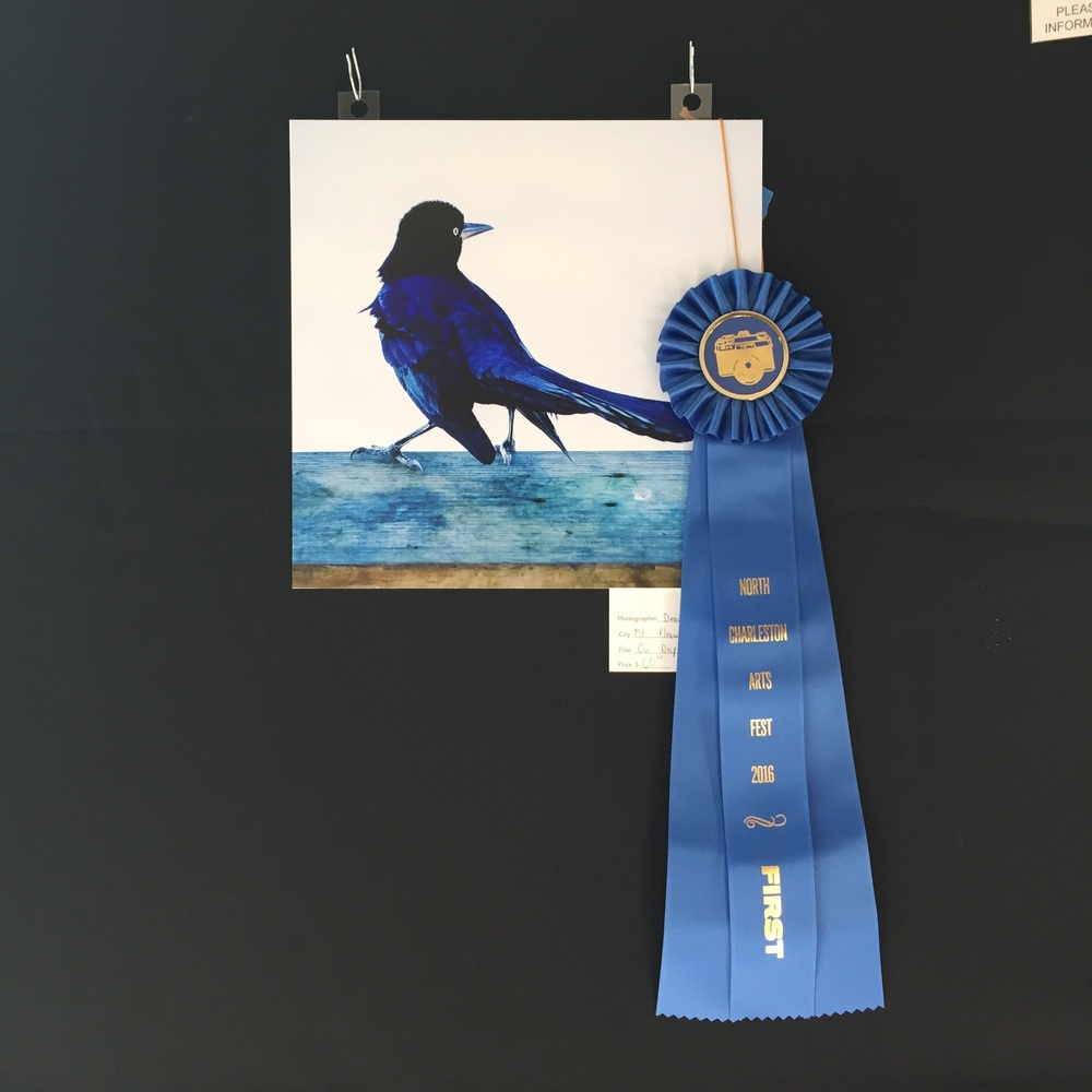 First place in the photo-illustration category