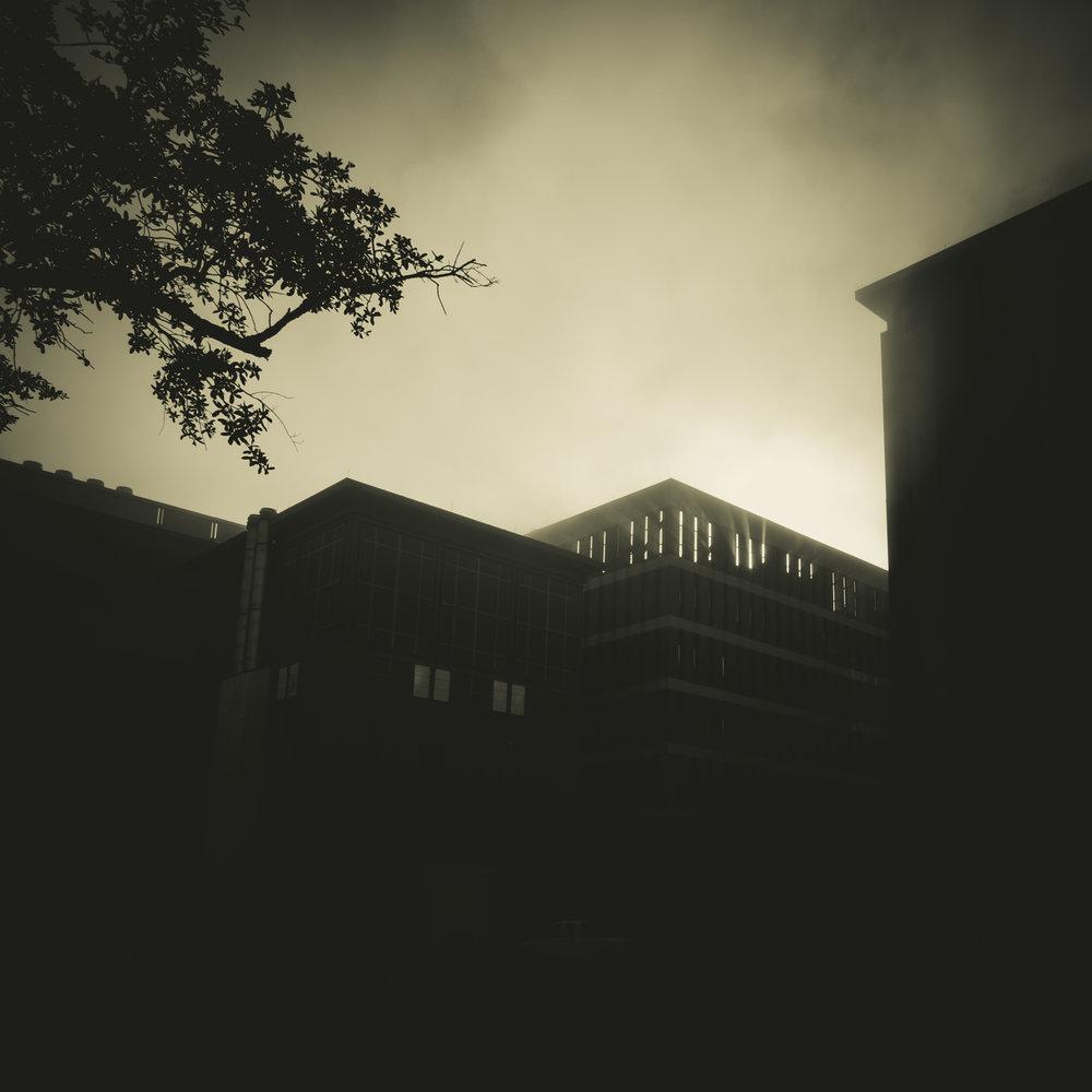 Pre-Halloween weekend foggy morning, Charleston, SC