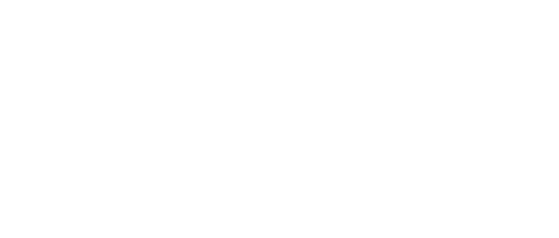Group to Team Leadership Solutions
