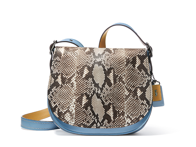 careteras 2016 coach ultima COLECCION TENDENCIAS