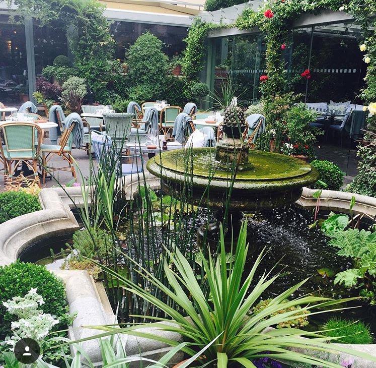 chelsea ivy garden.jpg