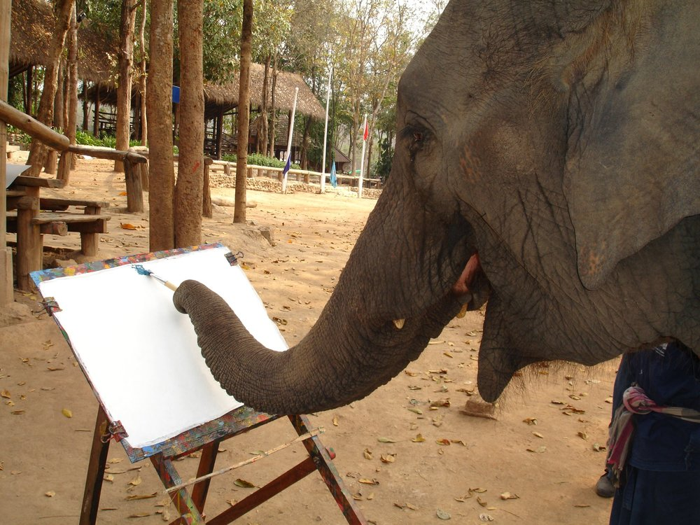 elephant-art-gallery.jpg