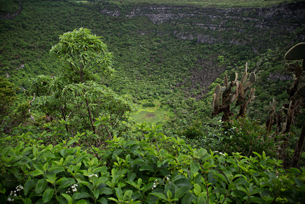 Picture 4-Cerro Mesa.jpg