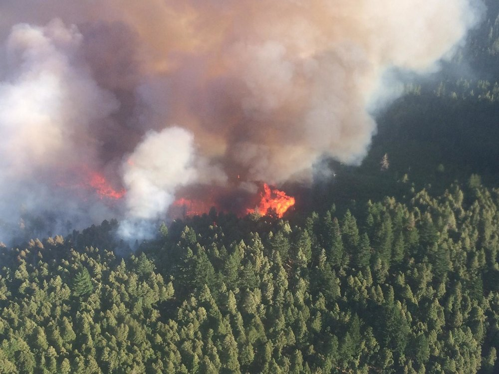 U.S. Forest Service photo of the Chetco Bar wildfire.