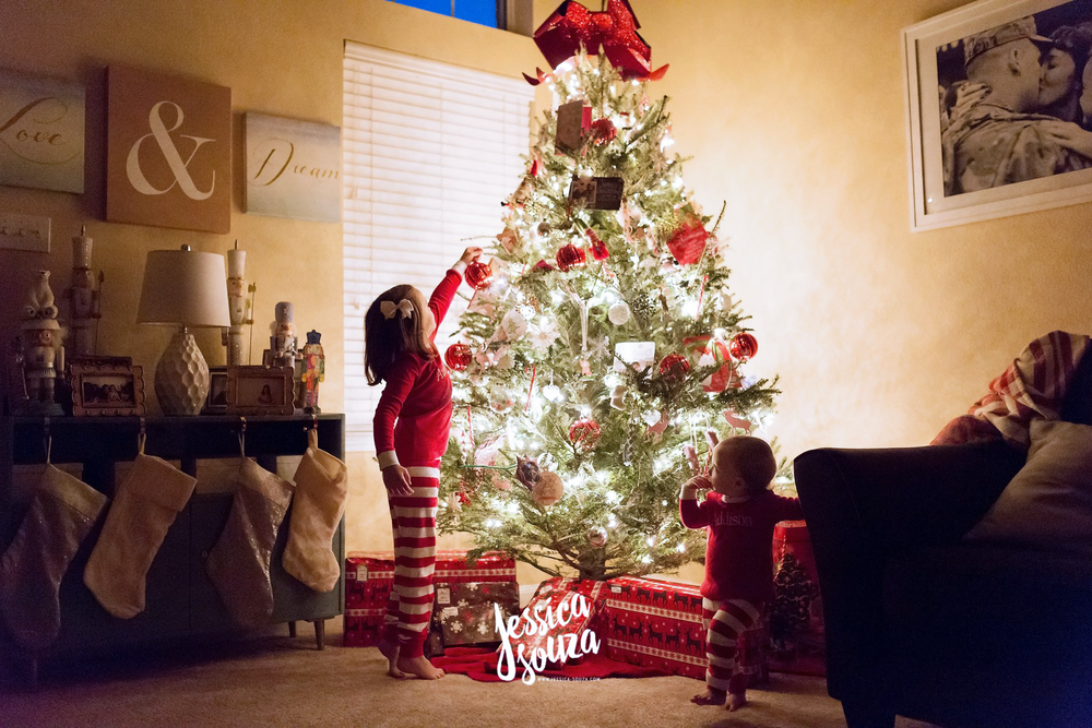 Sarasota Christmas Photographer