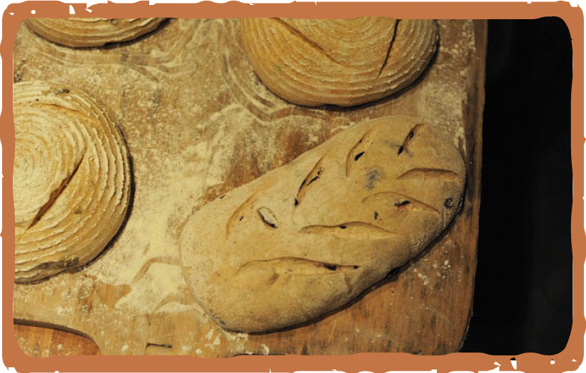 Hideaway-Bakery_website_Menu_BREAD_pic-v2.png