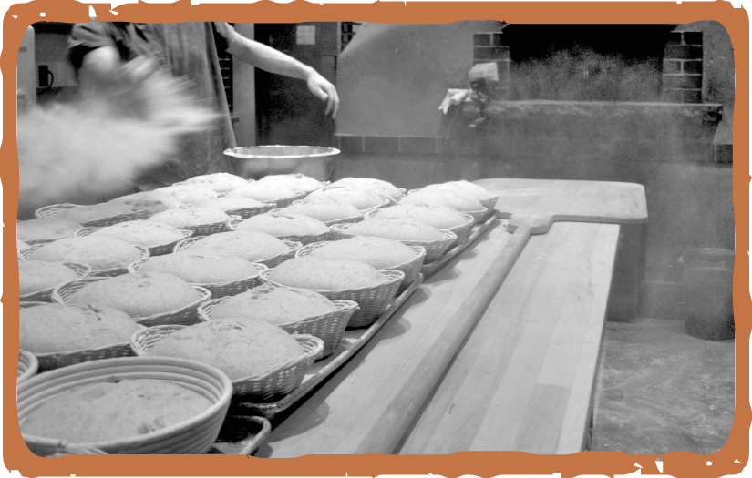Hideaway-Bakery_website_Menu_BREAD_pic-Flour-Flying-v1.png