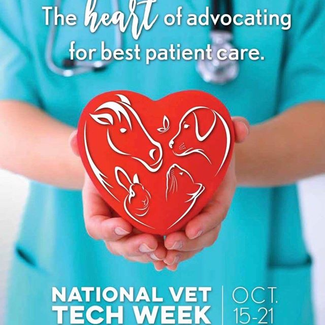 It's National Veterinary Technician Week! Thank you to all technicians and assistants for your hard work and dedication ❤️ . . . #nationalvettechweek  #nationalveterinarytechnicianweek  #veterinarian