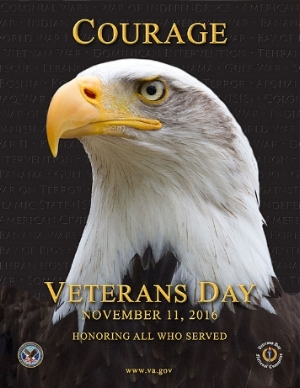 Officia va.gov veterans day image