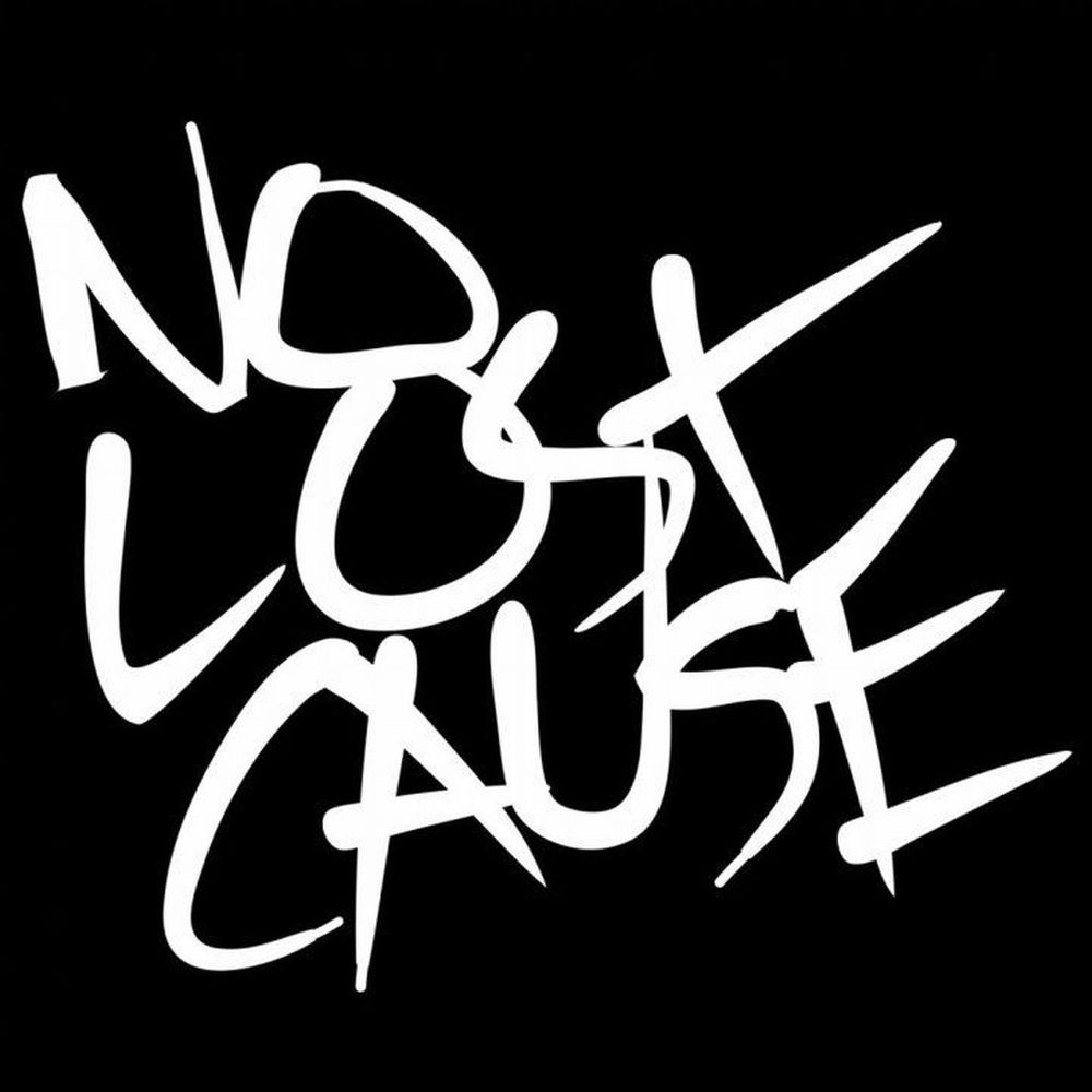 No Lost Cause logo.jpg