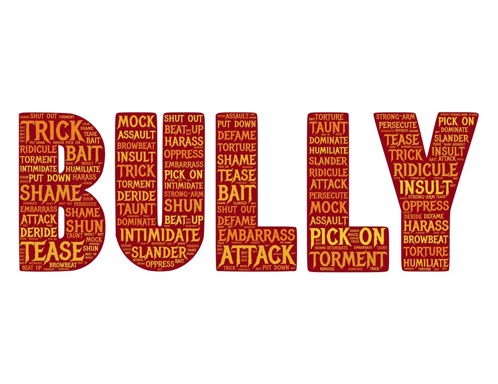 bully-655660_1920.jpg