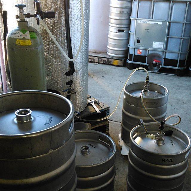 Filling kegs #slingshotcider  #margaretriver