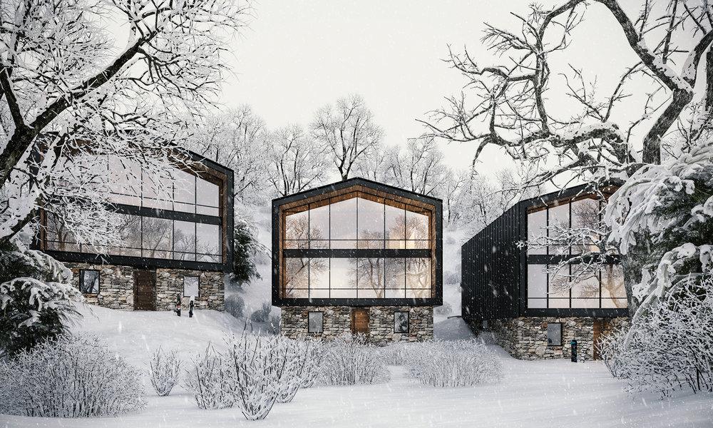 Mt Hotham House - Elevation MR with snow.jpg