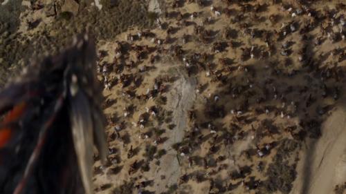 Drogon flying over the Dothraki Sea.