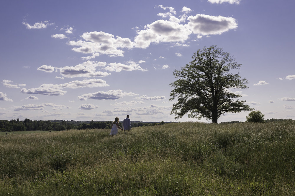 An underexposed photo of a couple walking through a field towards a tree