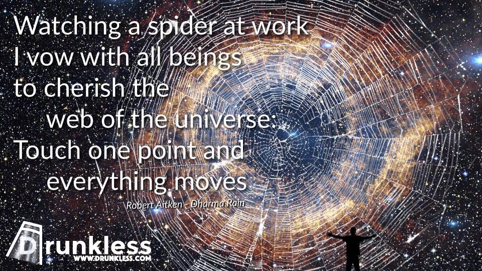 Web of the Universe