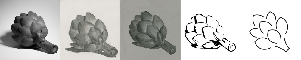 Initial exploration of artichoke in photography, graphite, charcoal, vector, and hyper-reductive forms