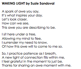 WAKING LIGHT Poetry By Suzie Sandoval.png