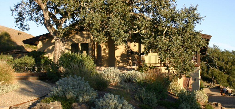 Sonoma Winery: from building to garden