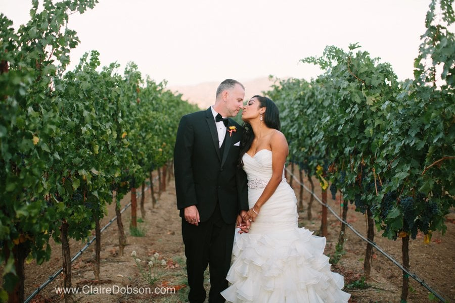 trione winery wedding40