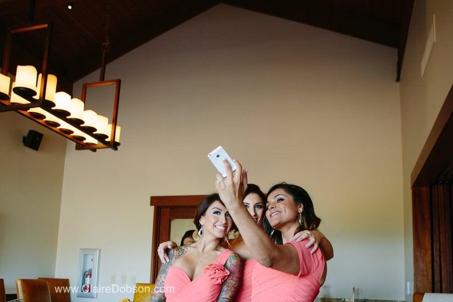 trione winery wedding15