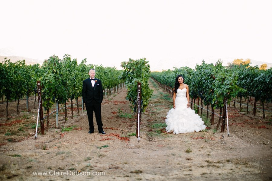 trione winery wedding32